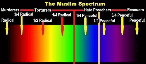 Muslim Spectrum